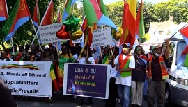 Ethiopians, Eritreans living in UK rally against foreign meddling into Ethiopia