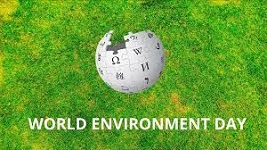 African businesses urged to protect environment