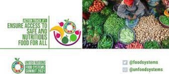 Small-scale producers at centre of food systems' transformation