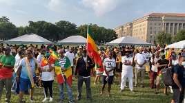 Ethiopians in Washington D.C. rally supporting Ethiopia
