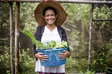 Public development banks' financing sustainable, equitable food systems
