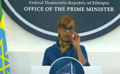 Ethiopia urges diaspora to use formal money transfer