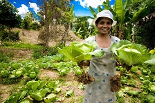 Agroecology can address food systems failures - new IFAD report