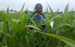 Africa's second plant breeding conference kicks off in Rwanda