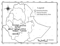 Ethiopia forms a new regional state